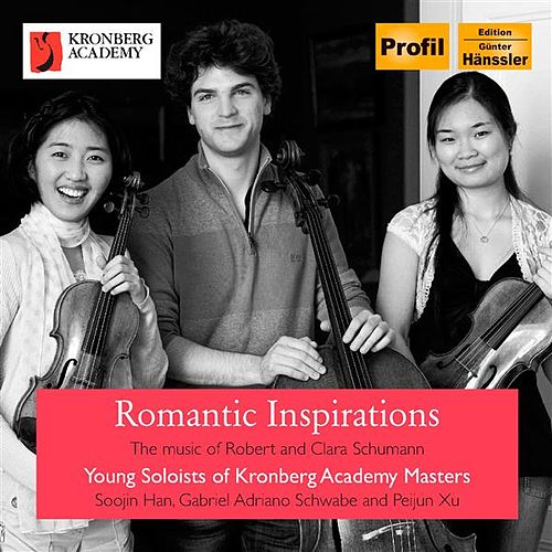 Romantic Inspirations by Various Artists