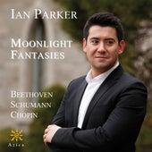 Moonlight Fantasies by Ian Parker