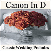 Play & Download Canon In D: Classic Wedding Preludes on the Piano, Wedding Songs, Preludes for Weddings, Wedding Music by Wedding Music Artists | Napster