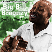 Play & Download Down In The Alley by Big Bill Broonzy | Napster