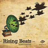 Rising Beats by Various Artists