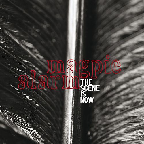 Play & Download Magpie Alarm by The Scene Is Now | Napster