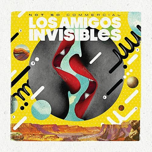 Play & Download Not So Commercial by Los Amigos Invisibles | Napster