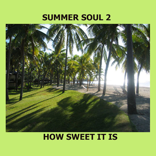 Summer Soul 2 - How Sweet It Is by Various Artists