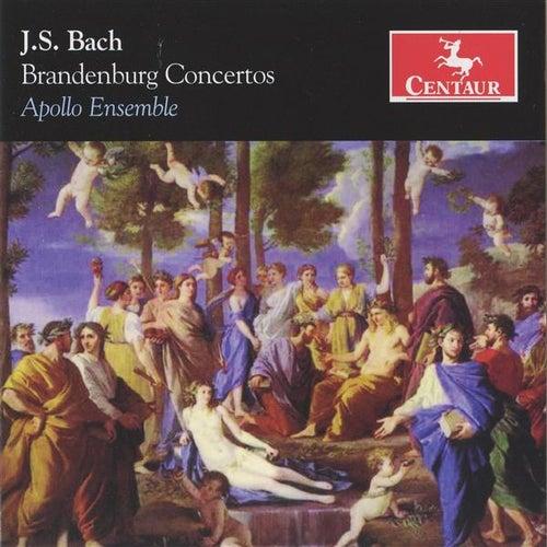 Play & Download Bach: Brandenburg Concertos by David Rabinovich | Napster