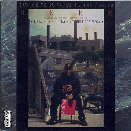 Trying to Survive In The Ghetto by Various Artists