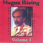 Negus Rising Volume 1 by Various Artists