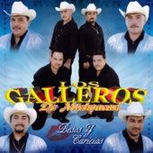 Play & Download Besos Y Caricias by Los Galleros de Michoacan | Napster
