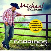 Play & Download Corridos Para Mi Gente by Michael Salgado | Napster