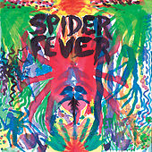 Whatcha Gonna Do by Spider Fever