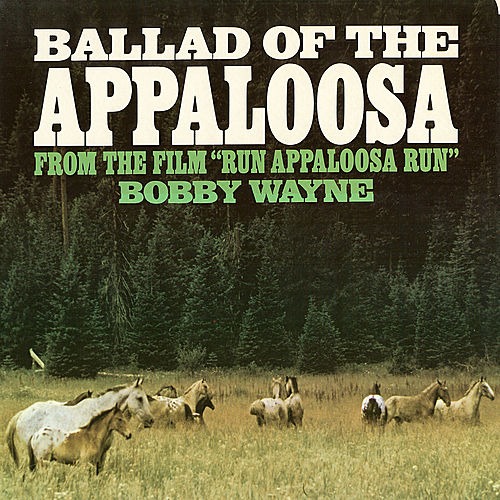 Ballad Of The Appaloosa by Bobby Wayne