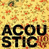 Acoustic Now by Various Artists