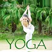 Essential Music For Yoga by Various Artists
