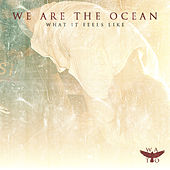 Play & Download What It Feels Like by We Are The Ocean | Napster