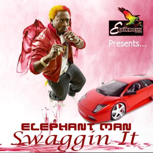 Swaggin It by Elephant Man
