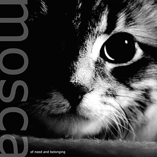 Play & Download Of Need & Belonging by Mosca | Napster