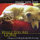 Music Pets Love: While You Are Gone by Bradley Joseph