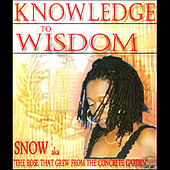 Knowledge To Wisdom by Snow