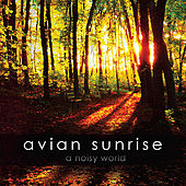 A Noisy World by Avian Sunrise
