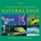 Naturklänge von Thors