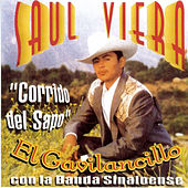Play & Download Corrido Del Sapo by Saul Viera el Gavilancillo | Napster