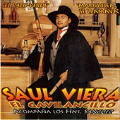 Play & Download Mariquita Se LLamava by Saul Viera el Gavilancillo | Napster