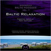 Play & Download Syncsouls Baltic Moooods - Relaxation by the sea - Crashing Waves, Soaring Seagulls, Soothing Sounds by Torsten Abrolat | Napster