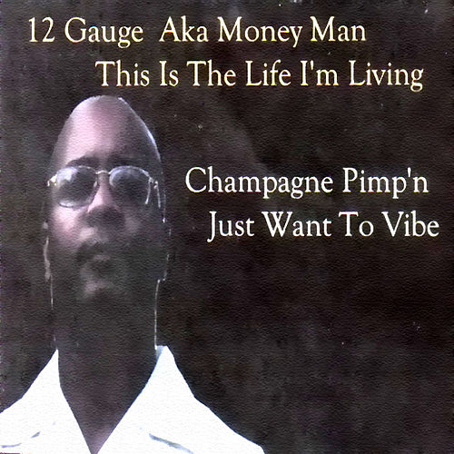 Play & Download This Is The Life I'm Living by 12 Gauge | Napster
