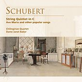 Play & Download Schubert: String Quintet in C . Ave Maria and other popular songs by Various Artists | Napster