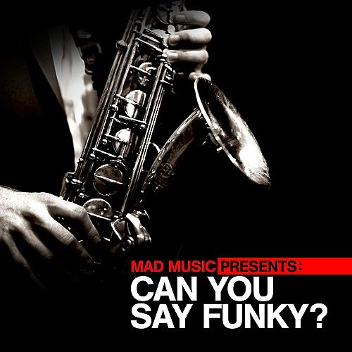 Play & Download Mad Music Presents Can You Say Funky? by Various Artists | Napster