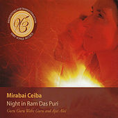 Play & Download Night in Ram Das Puri by Mirabai Ceiba | Napster