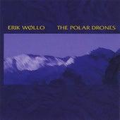 Polar Drones by Erik Wollo