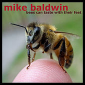 Bees Can Taste With Their Feet by Mike Baldwin
