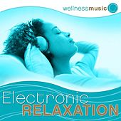 Play & Download Wellness Music: Electronic Relaxation by Various Artists | Napster