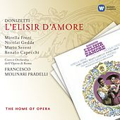 Play & Download Donizetti: L'elisir d'amore by Various Artists | Napster