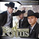 Play & Download Puras Chakas by Los Rams De La Sierra | Napster