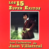 Play & Download Los 15 Super Exitos by Los Cachorros de Juan Villarreal | Napster