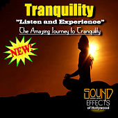 Play & Download Tranquility - Listen And Experience The Amazing Journey To Tranquility by Tranquility | Napster