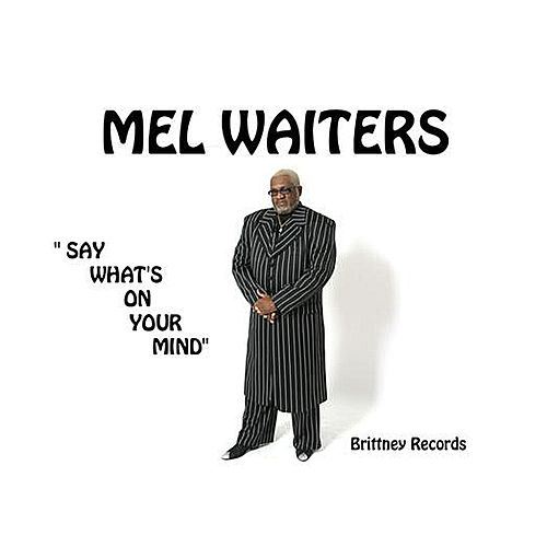 Play & Download Say What's On Your Mind by Mel Waiters | Napster