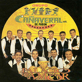 Play & Download Palacio De Amor by Grupo Cañaveral | Napster
