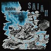 Hidden Treasure by Saiah