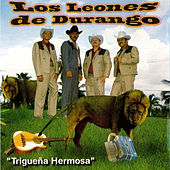 Play & Download Triguena Hermosa by Los Leones de Durango | Napster