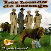 Play & Download Triguena Hermosa by Los Leones de Durango | Napster