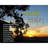 Play & Download Enchanted Evening by Incognito | Napster