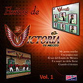 Play & Download Exitos de La Victoria de Mexico: Volume 1 by La Victoria de Mexico | Napster