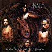 Cuando los ángeles lloran by Maná
