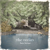 Here Before by The Feelies