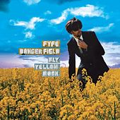 Fly Yellow Moon by Fyfe Dangerfield