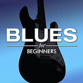 Blues for Beginners by Various Artists
