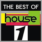 The Best of House, Vol. 1 by Various Artists